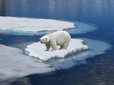 Weltklimarat warnt vor steigendem Meeresspiegel. Foto: Rosel Eckstein by Pixelio.de